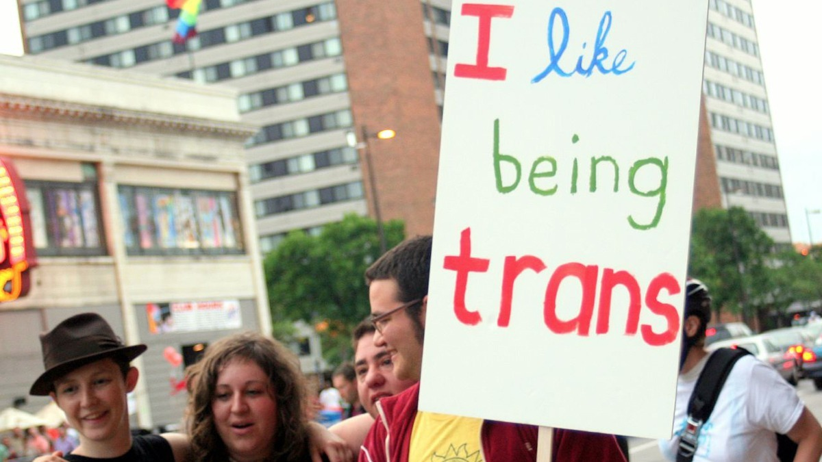 Transsexual healthcare in universities