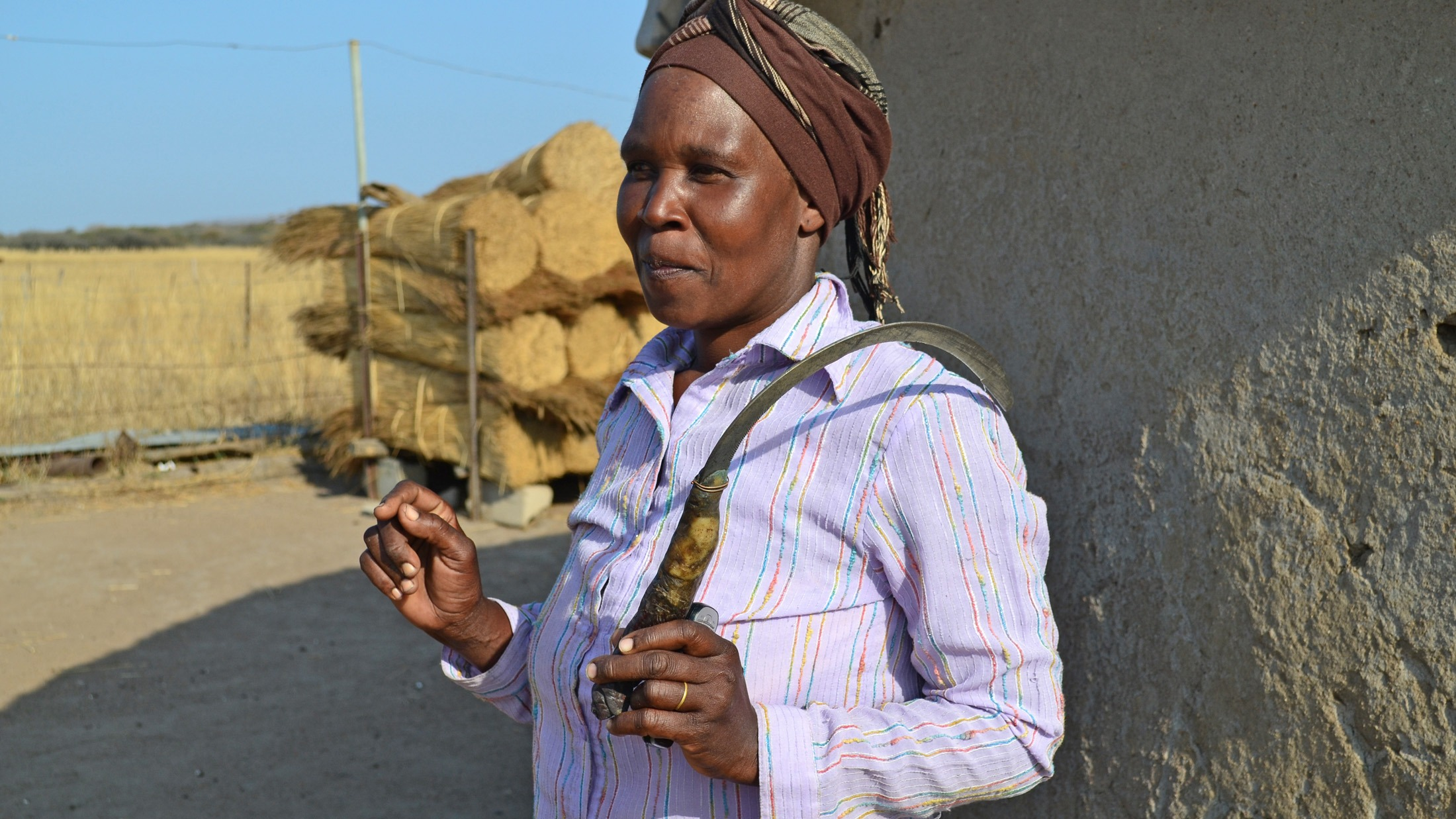 Sibongile Mthimkhulu, 63, has struggled to support her family since the land where she lives in South Africa's Kwazulu-Natal Province was sold to a heritage council that limits the numbers of cattle she can keep. She now cuts and sells grass to get by.