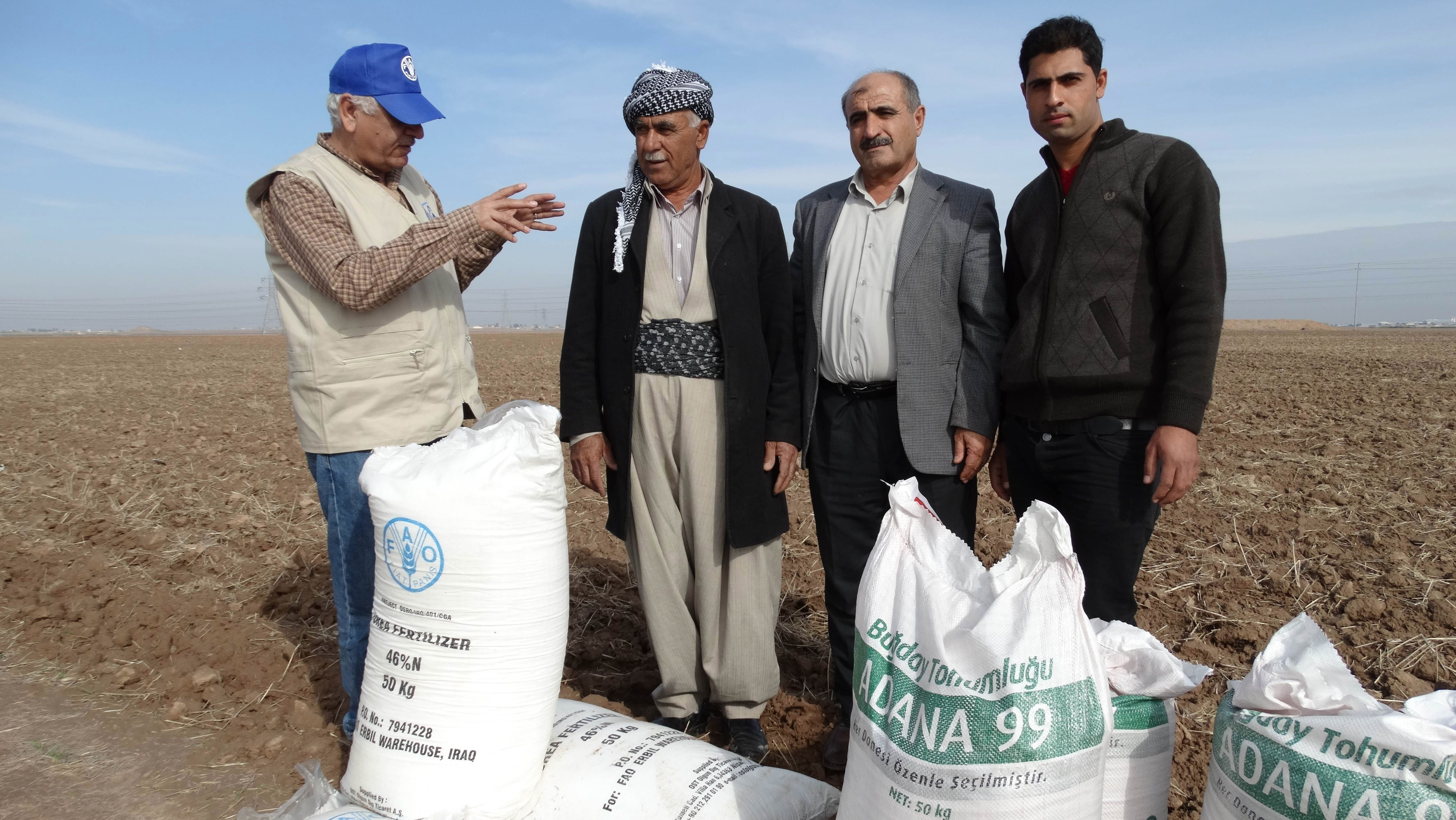FAO distributing seed and fertilizer to farmers in Iraqi Kurdistan who have been affected by the advance of ISIS. Picture taken November 2014 in Erbil Province.