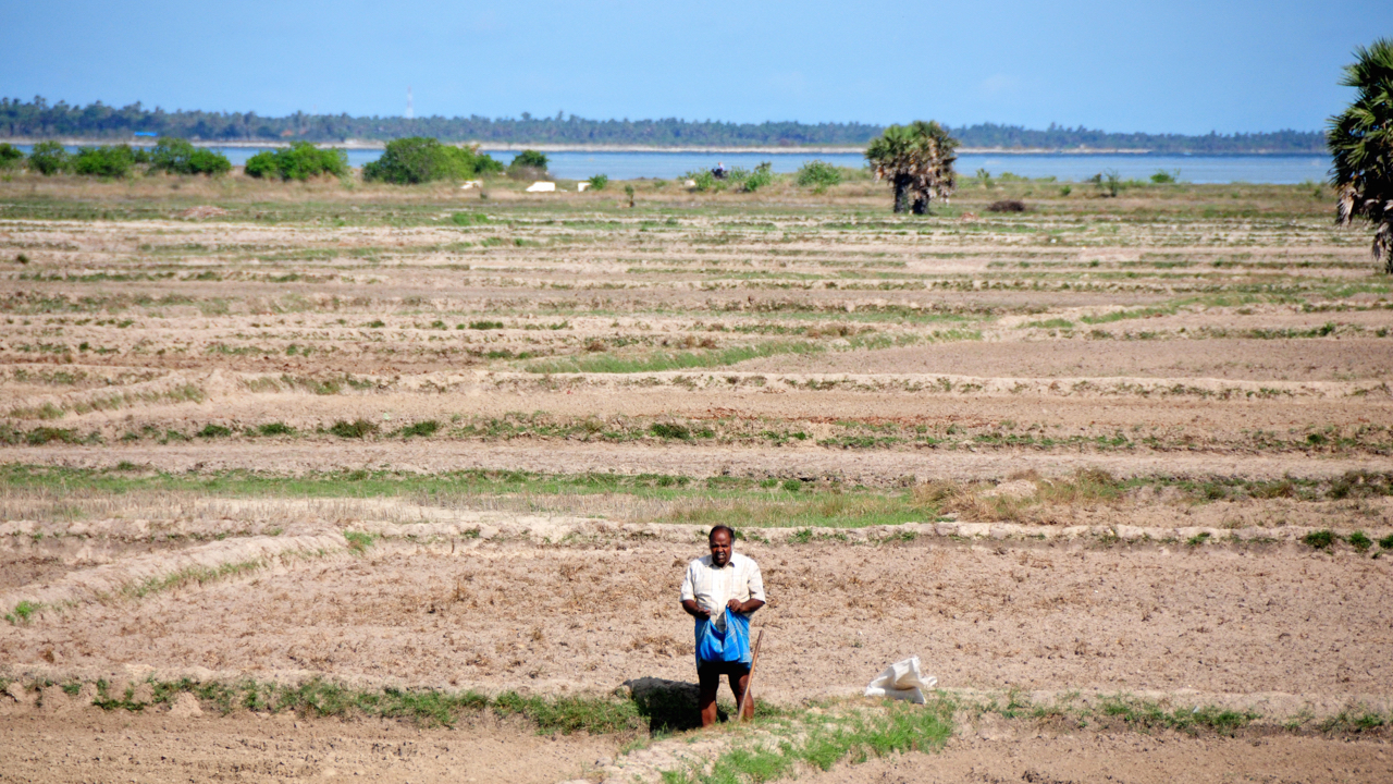 A man stands in his parched paddy fields in the Northern District of Jaffna, Sri Lanka, in November 2014. The country experienced 10 months of drought followed by floods and landslides. Local communities ignored official warnings, leading to loss of lives