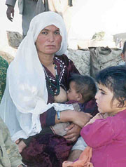 [Afghanistan] Sawlad Begum breast feeding in public.