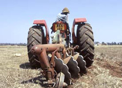 [Zambia] A tractor helps plough a field (wheat) in Zambia.