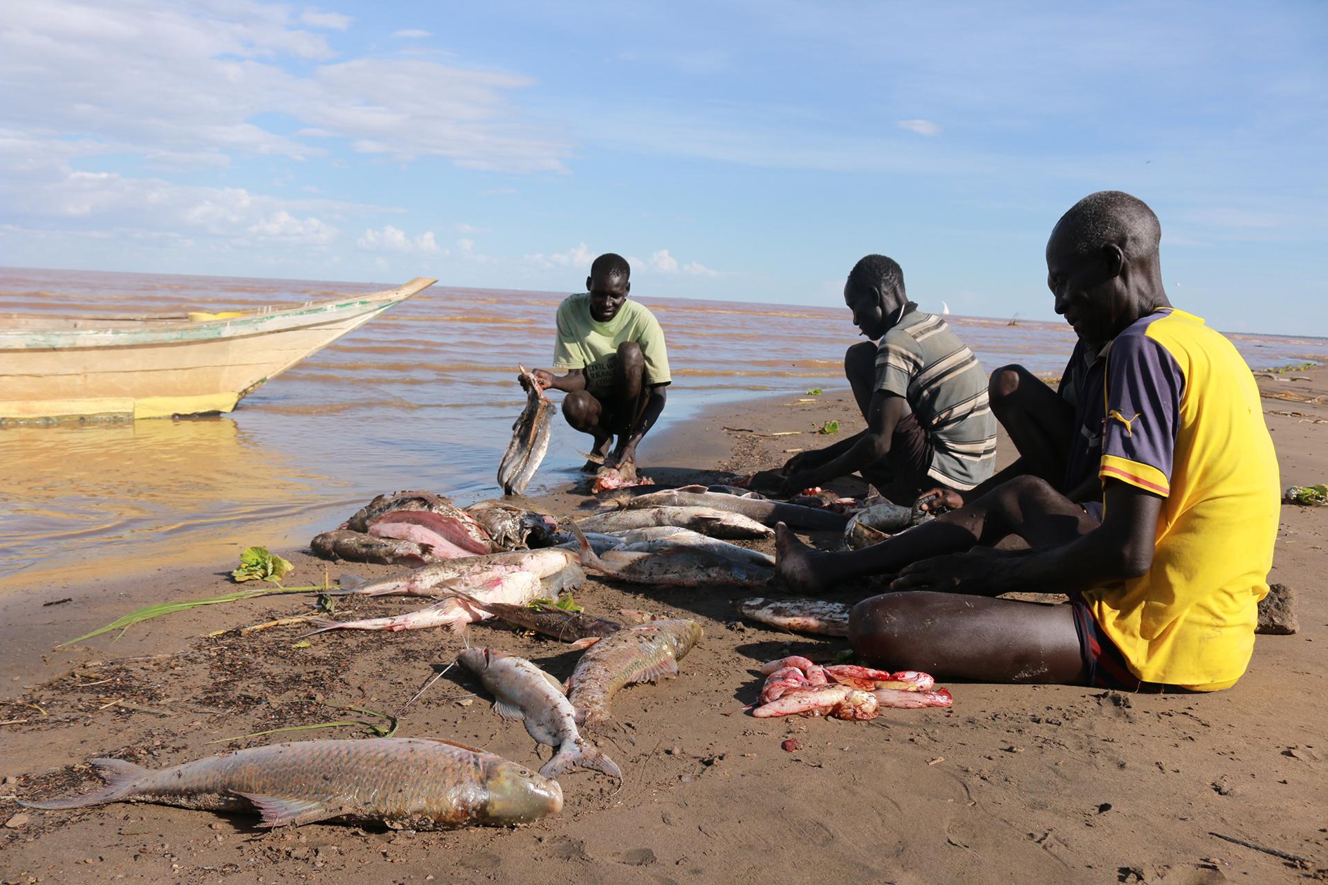 Fishermen with fish on the shore of Lake Turkana