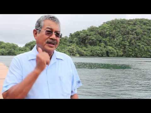 Video 2 Palau