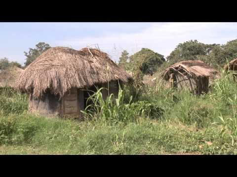 Forced to Flee - Uganda's Northern Rebellion
