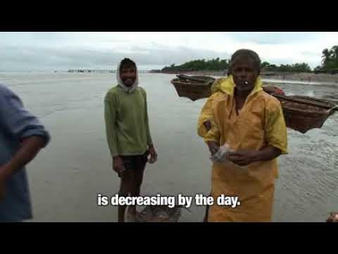The Gathering Storm - Sinking Island