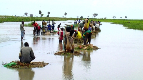 Many Cameroonians who rely on the Logone River for their survival have been forced to flee to dryer lands, as flooding and storms destroy their homes and fishing boats.