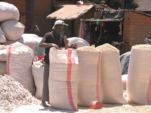 [Zambia] Bags of maize at a markeplace in Meheba.