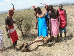 [Kenya] Samburu herders look at the skeleton of a cow killed by drought at Ntungai village, Isiolo District. [Date picture taken: 01/12/2006]