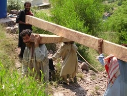 [Pakistan] In quake-ravaged Pakistani-administered Kashmir, carrying wooden beams to higher altitude areas where roads are poor or inaccessible remains a significant challenge for local inhabitants.[Date picture taken: 09/01/2006]
