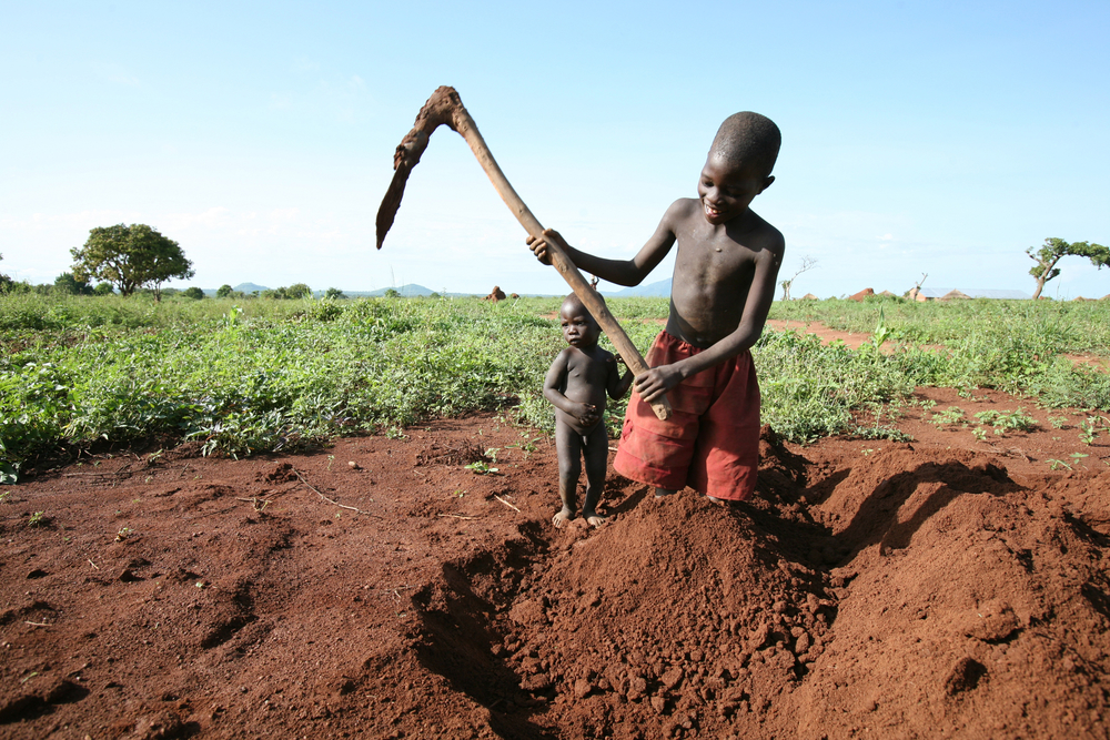 young boy helps in the farm while a sibling watches, Kitgum District, northern Uganda, 16 May 2007. In isolated parts of Kitgum District, some of the IDPs have been able to return home temporarily to cultivate beans, cassava, green grams, maize, millet, s