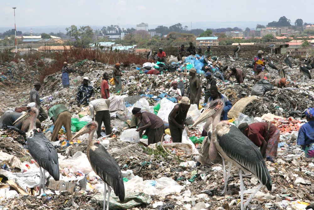 The Dandora Municipal Dumping Site, Nairobi, Kenya, October 2007, is a serious threat to children living nearby and the city's general environment, according to the UN Environment Program. A new report examined 328 children aged two to 18 living around