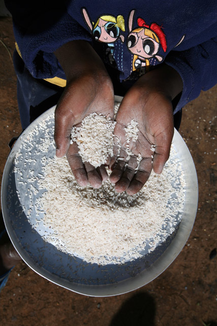 A young girl cleans rice to cook at the Eldoret IDP camp, April 2008. The camp hosts over 14,000 people displaced during the post election violence in Kenya.