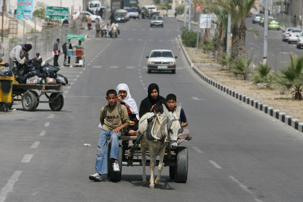 Without any fuel for vehicles, some Gaza residents have resorted to using donkeys to get around.