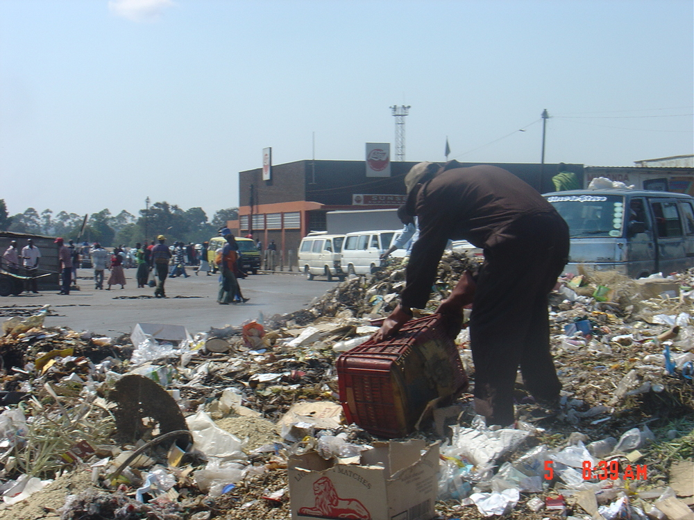Scavenging for food in rubbish dumps.