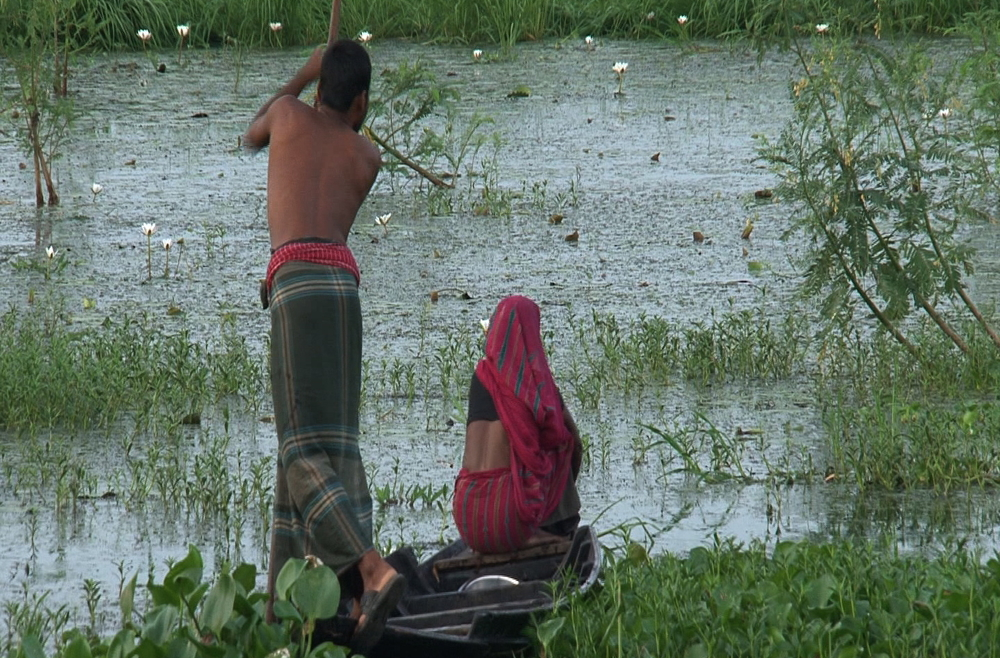 Sujit Kumar Mondal and his wife Rupashi Mondal of Gopalgonj district in southern Bangladesh working in their floating garden