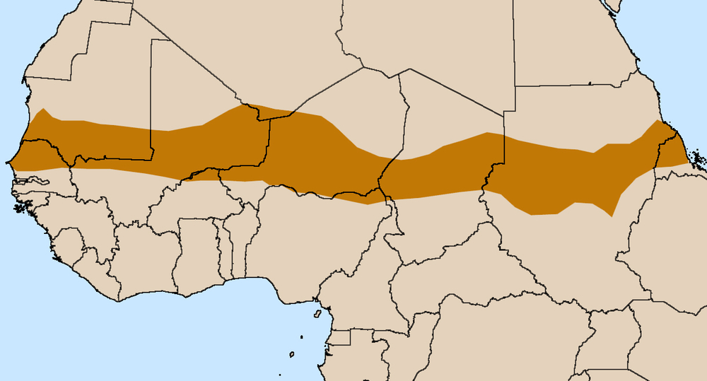 Map showing the Sahel region across northern Africa