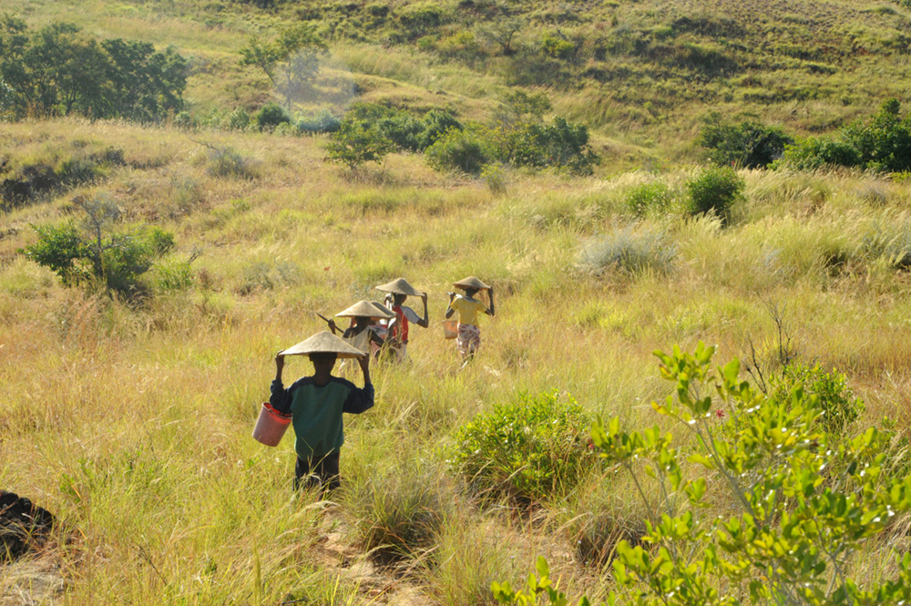 A group of girls aged 8-15 walk two hours into the mountains north of Ankavandra, Madagascar, to pan for gold