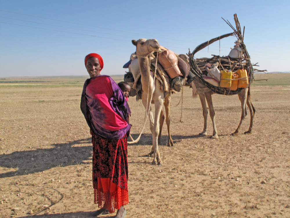 A family of pastoralists migrating to a less drought-stricken area of Ethiopia's eastern Somali region