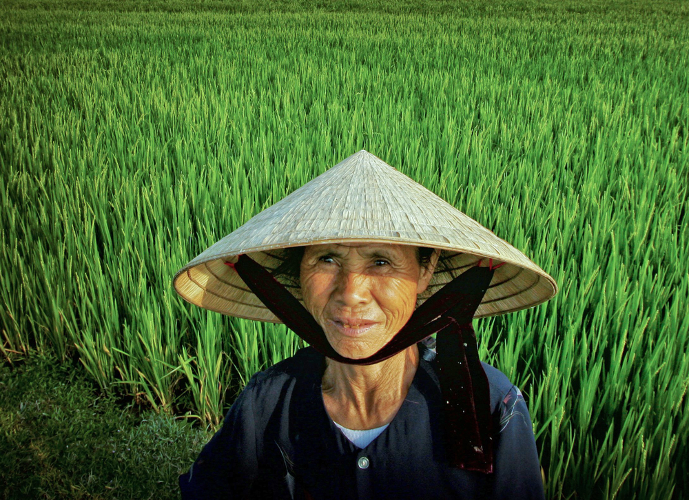 "A Vietnamese woman in her rice field near Vinh, Vietnam. Vietnam is the second largest exporter of rice in the world – shipping out 6.83 million tons of milled rice in 2010, and the Mekong Delta is the its ""rice basket,"" producing more than half of"