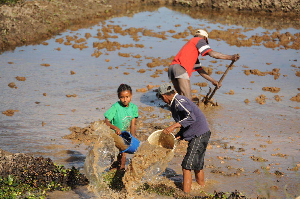 A family prepares a rice field for planting in the Madagascan capital of Antananarivo