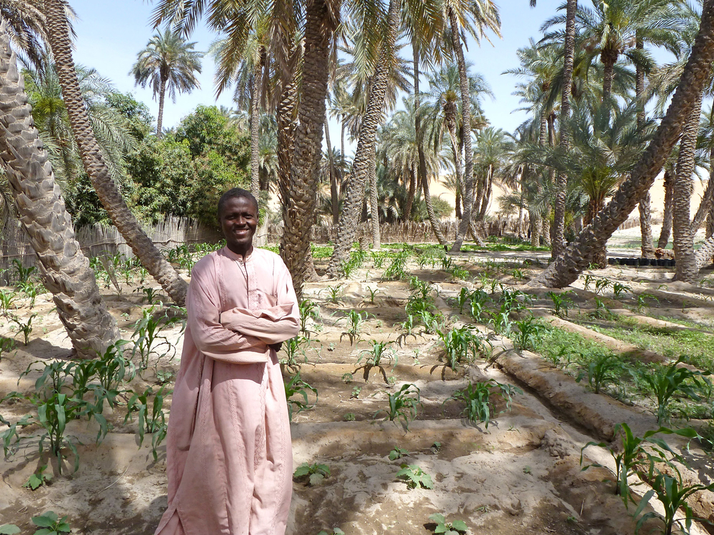 Minder Mohamed Ali guards fields of crops grown in Aloum 2 wadi, 8km from Mao, in Kanem region of western Chad. FAO and ECHO are helping villagers to access wadis – traditionally owned by the aristocracy – to grow vegetables in a bid to help reduce fo