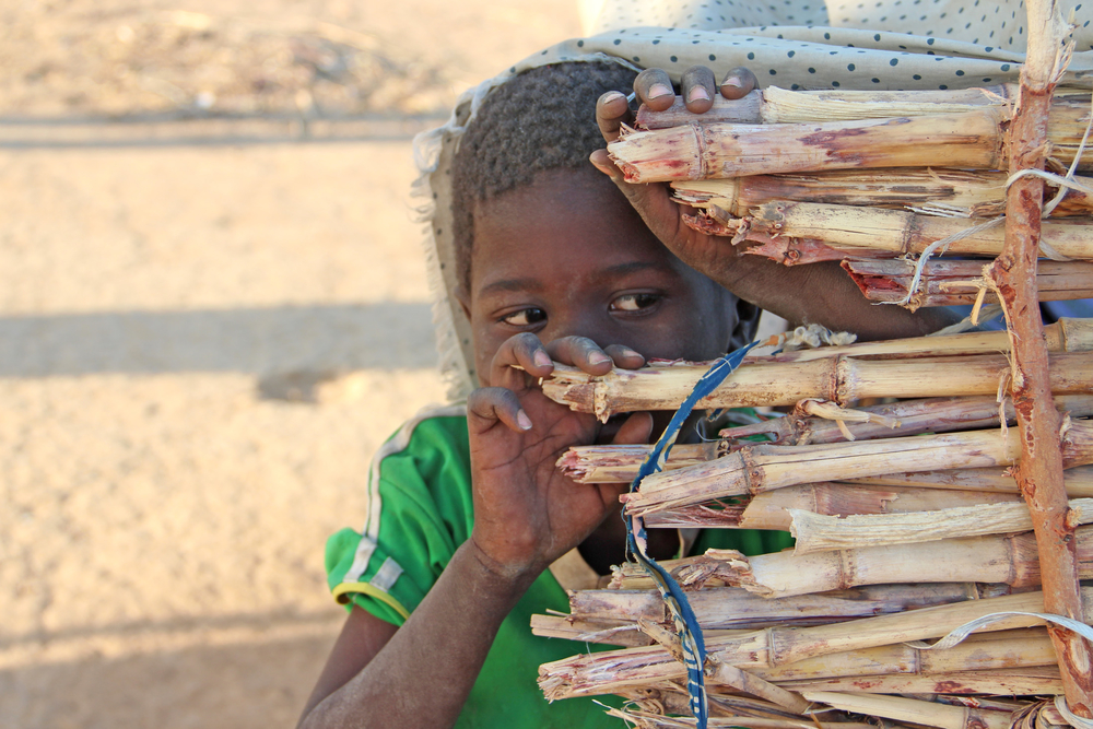 A boy peeks from the entrance of a makeshift shelter at a camp outside the Chadian capital N'Djamena where thousands sought refuge in the aftermath of heavy flooding in 2012