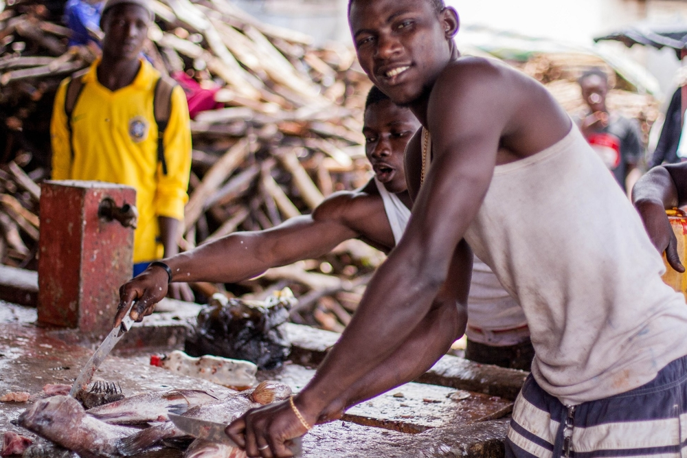 Amadou Condé is cleaning fish at Port de Boulbinet in the Guinean capital Conakry. August 2013. A local NGO helped him get off the streets, train up and find work - first as a fish-cleaner. He now wants to become a carpenter