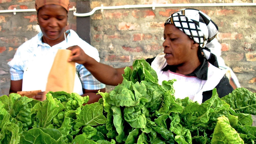 Vegetables produced by small farmers being packaged by the NGO, Abalimi Bezekhaya