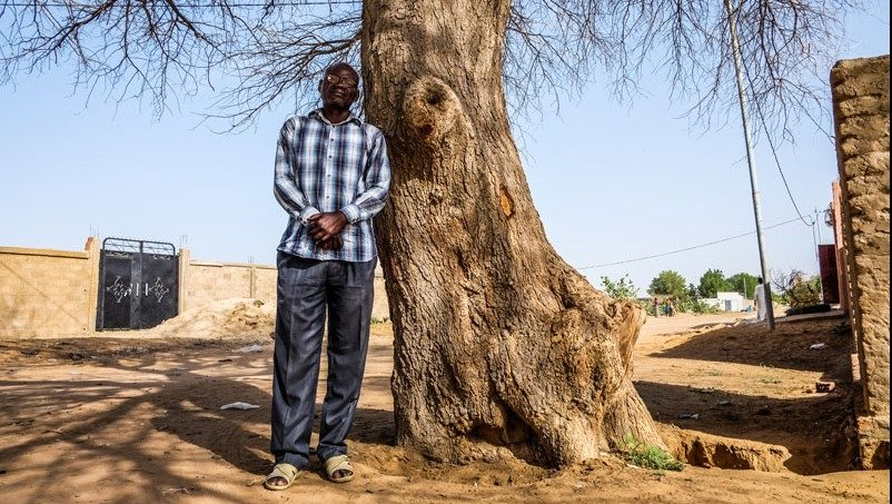 'Djamena, Chad (July 9, 2015) - Clement Abaifouta stands at the tree where he ways he buried his first body, during the four years he was 'wrongfully imprisoned' under former Chadian President Hissene Habre's regime. Abaifouta was nicknamed 'the gravedigg