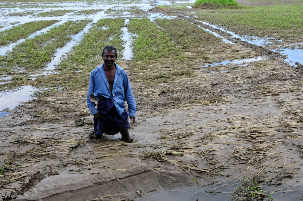 Ranbanda Wijesinghe stands in his field in Pollonaruwa, Sri Lanka, during floods in 2011.