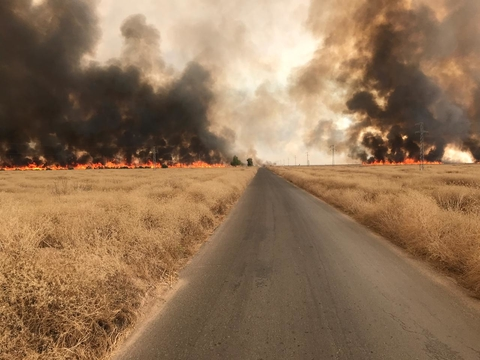 Photo of crop burning fires in Sinjar Iraq