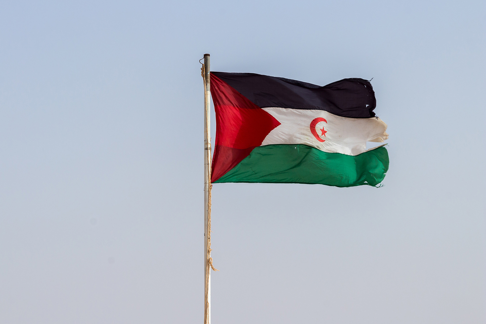 Flag of Western Sahara against the sky