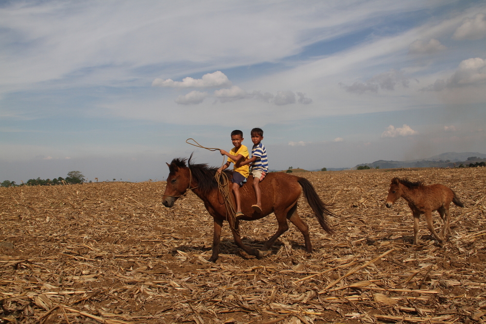 Children ride a horse in a drought-stricken field