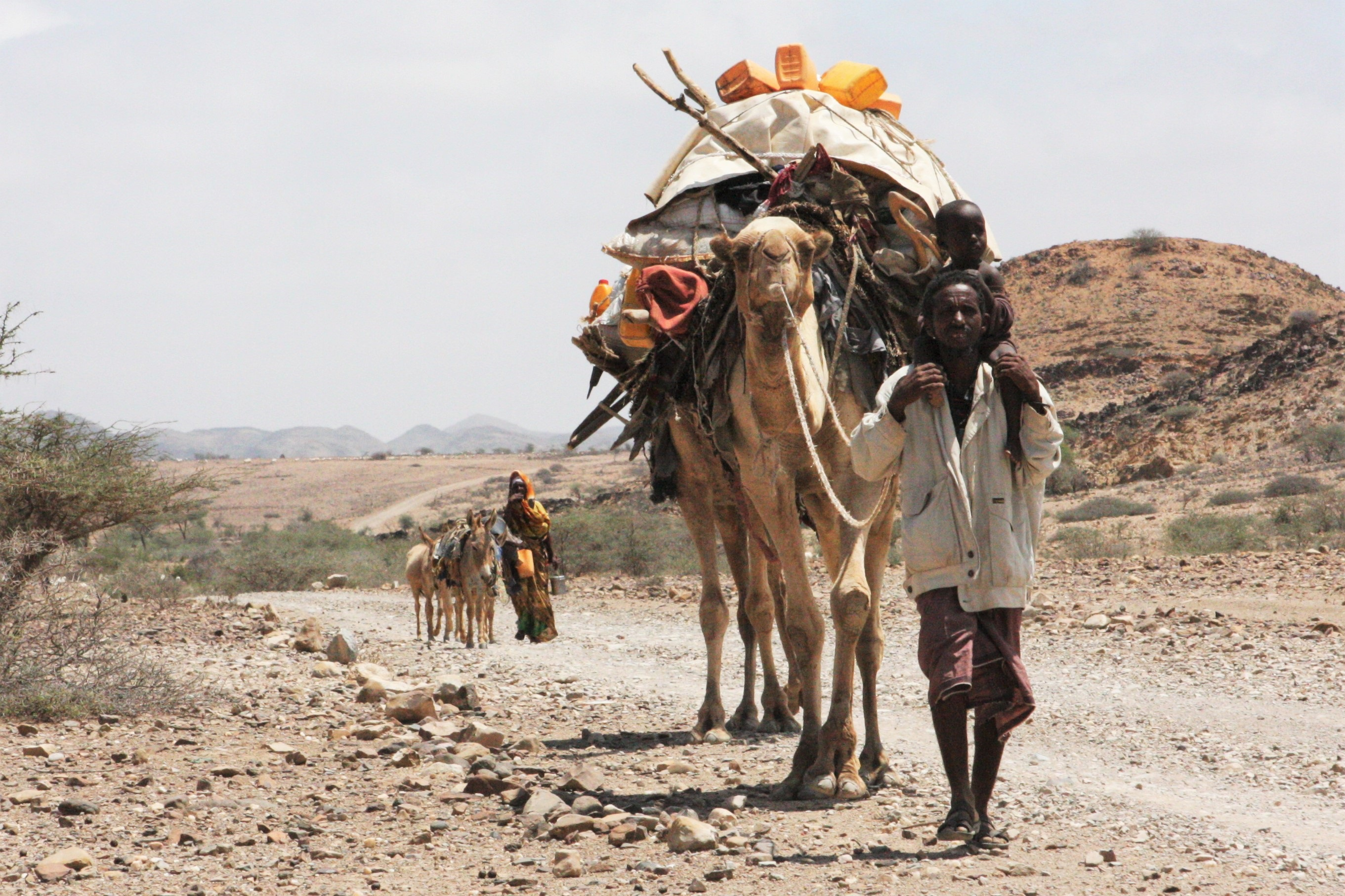 Ethiopian pastoralists return from Somalia