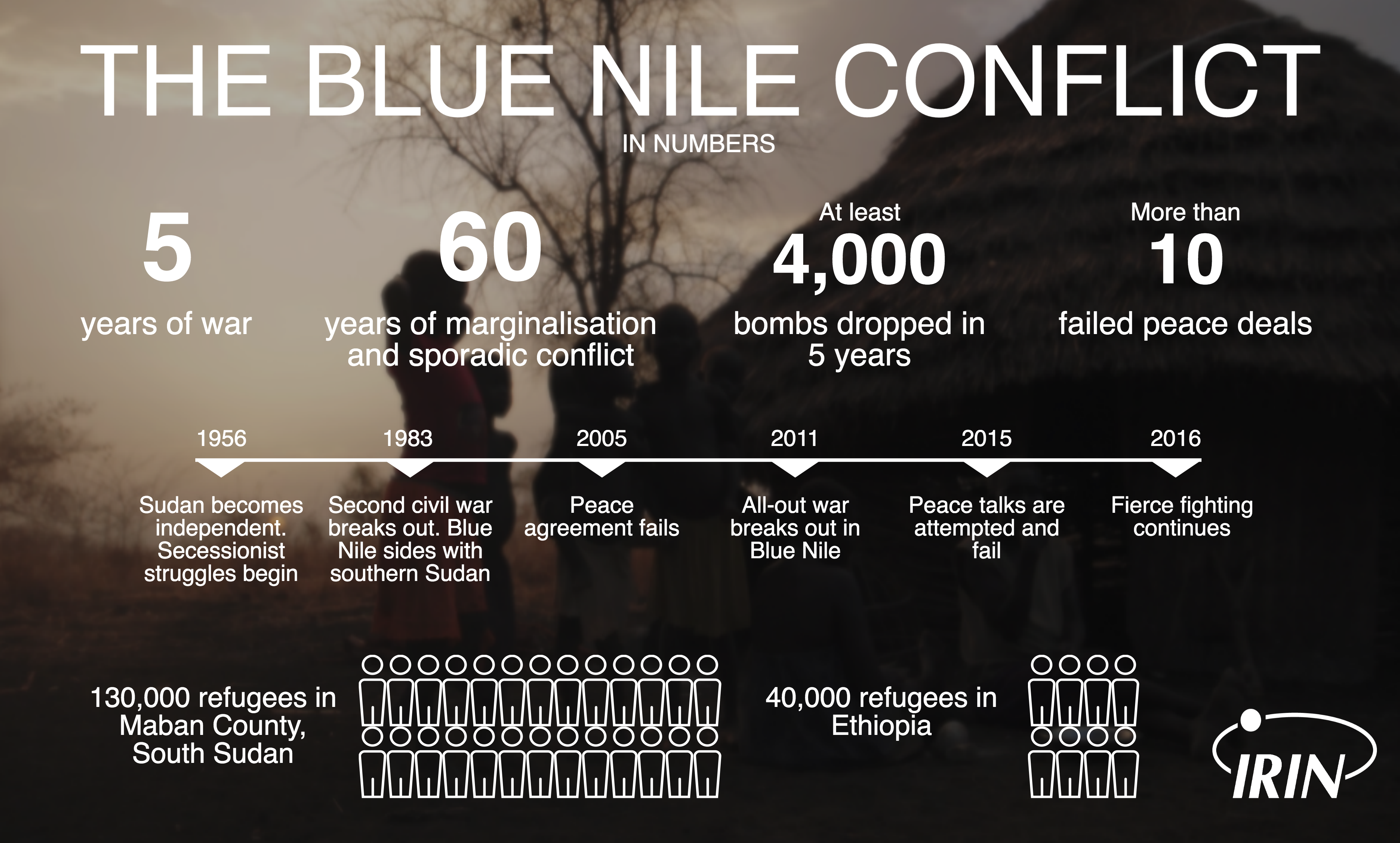 Blue Nile numbers infographic
