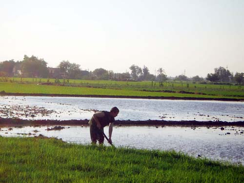Rural areas in the Nile Valley severely lack proper sewage systems and are contaminating Egypt's groundwater as a result.