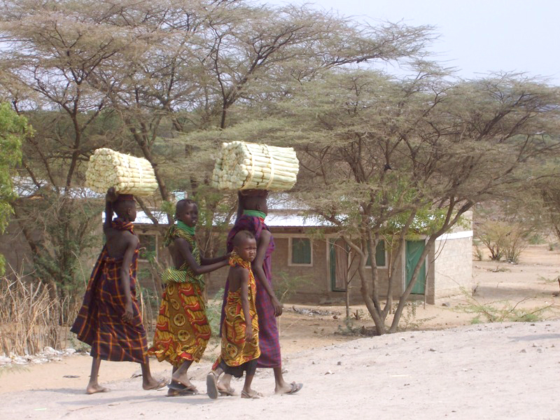 Young Turkana girls carry traditional brooms to a local market for sale in northern Kenya