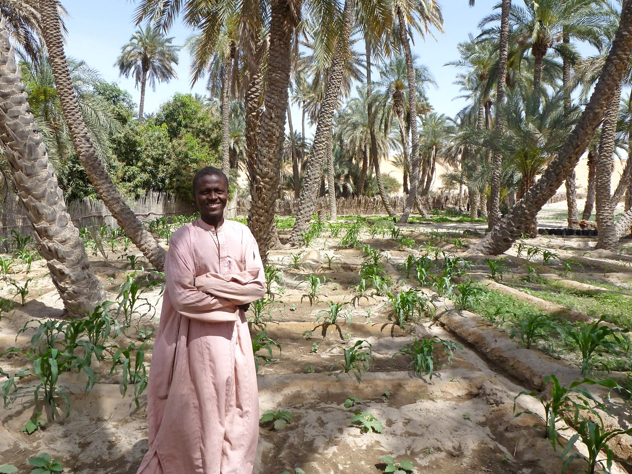 Irin l agriculture durable est elle possible au sahel for L agriculture