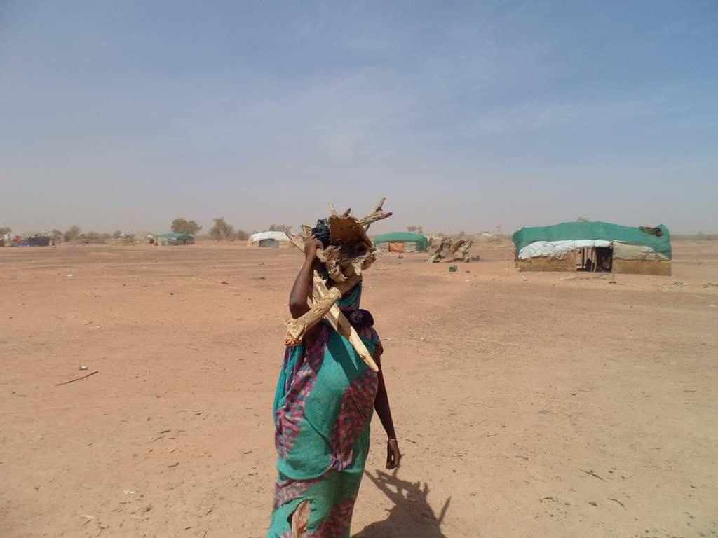 Fetching firewood at the Mentao camp in northern Burkina Faso. Many Malian refugees at Mentao complain of poor quality of life that is forcing some to return home, where they say security and political problems persist
