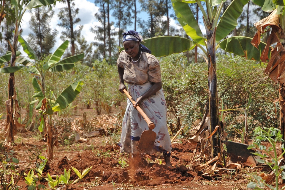 A woman farms red dirt in Kenya.