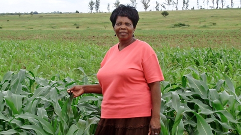 Ella Mubayiwa, 60, returned from England to claim a farm during Zimbabwe's 2000 land redistribution programme