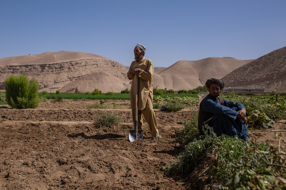 Two men in Afghanistan in a farm field.