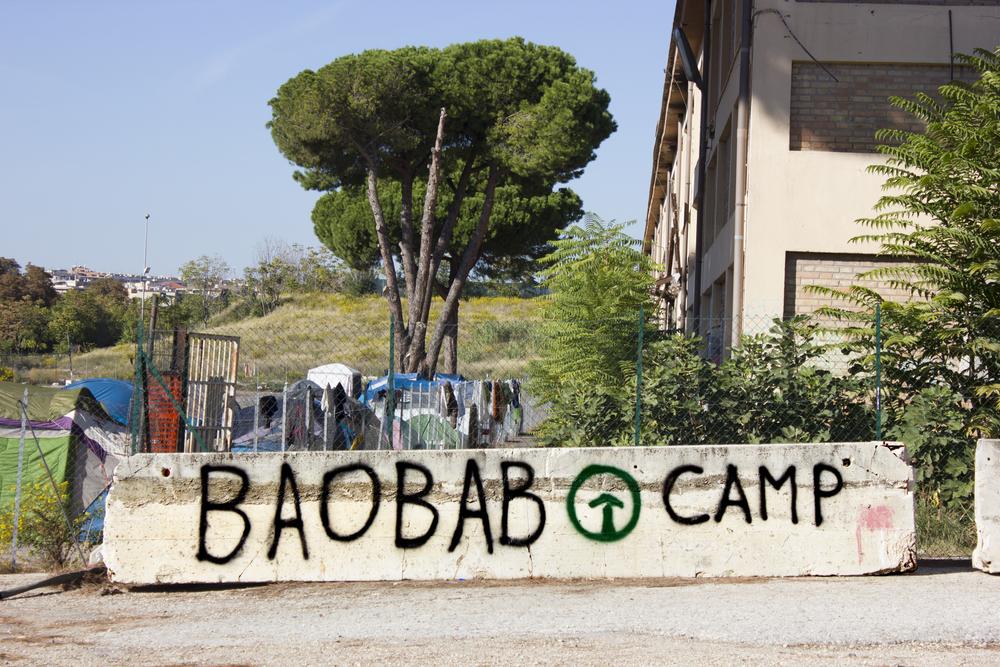 Baobob camp