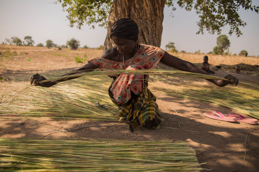 Many women collect high grass and weave it into fences to sell at the market