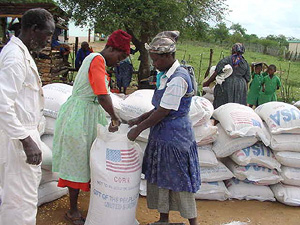 [Swaziland] A food relief committee member distributes food aid in Swaziland.