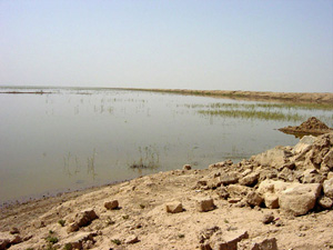[Iraq] Water is returning to some of the former marshes.