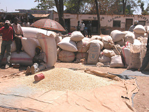 [Zambia] Maize being sold at a marketplace in Meheba.