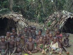 [Republic of Congo] Baka/Batwa children in the Ibamba village, 150 km northwest of the industrial city of Pokola, Republic of Congo. [Date picture taken: Oct 2005]