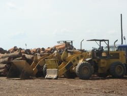 [Mozambique] Heavy machinery from China empowers Mozambican loggers. [Date picture taken: 10/2006]